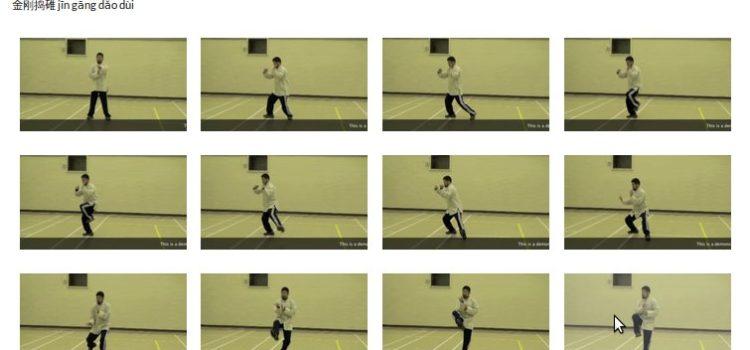 Meister Chen Zhonghua's Yilu – Namen und Screenshots