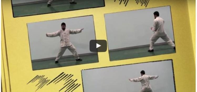 Freie Videos mit Meister Chen Zhonghua